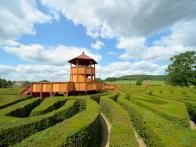 Composed of more than 16,000  English yews , the  Longleat Hedge Maze , located near the town of Warminster in Wiltshire, England, is a stunning creation that was first laid out in 1975 by the renowned designer Greg Bright.