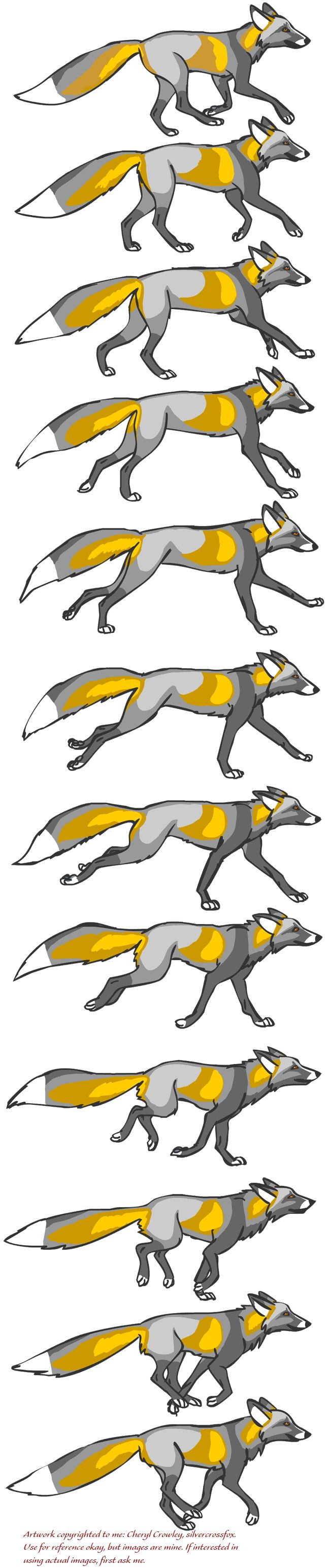 Fox Running Reference by silvercrossfox.deviantart.com on @deviantART