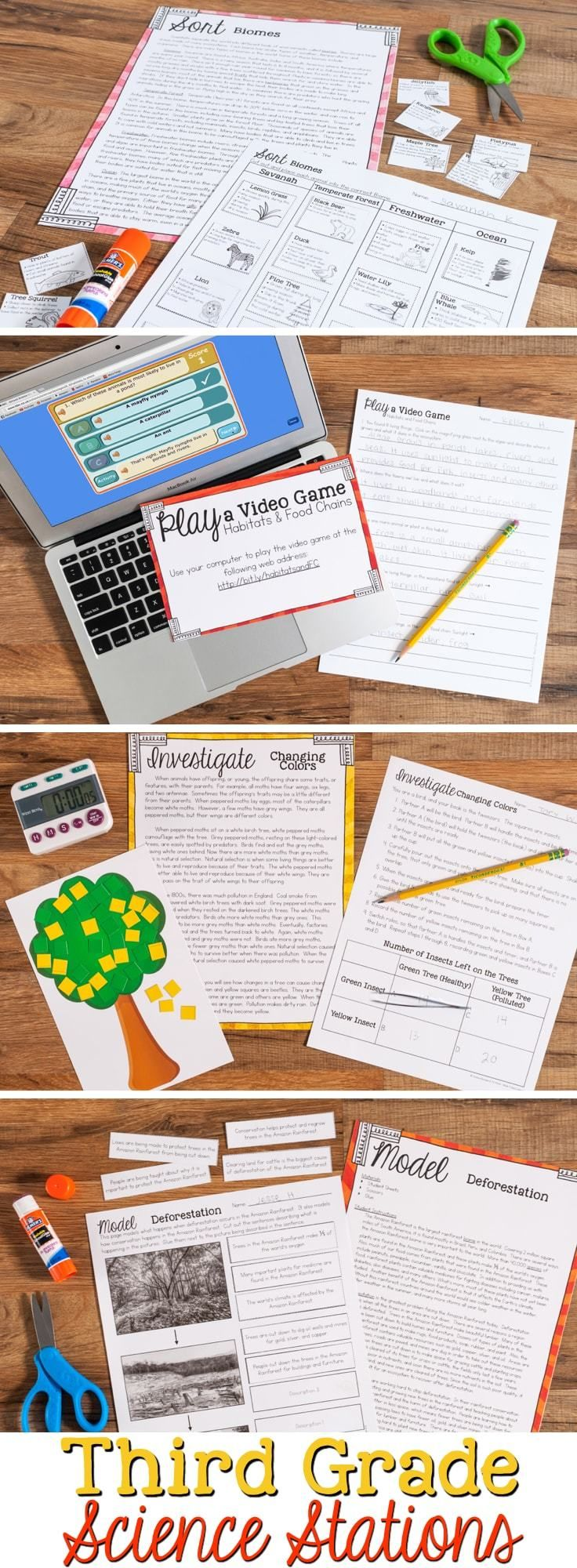 3rd grade science essays Print free third grade worksheets to help your child or students with reading, language arts, social studies, science, and mythology.