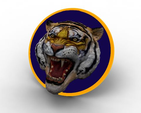 8 best LSU Tigers images on Pinterest Lsu tigers, Beauty products - copy lsu tigers coloring pages