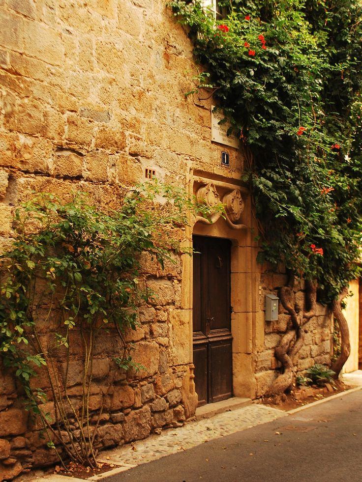 Le tissu végétal orne les pierres de la ruelle de St Céré.