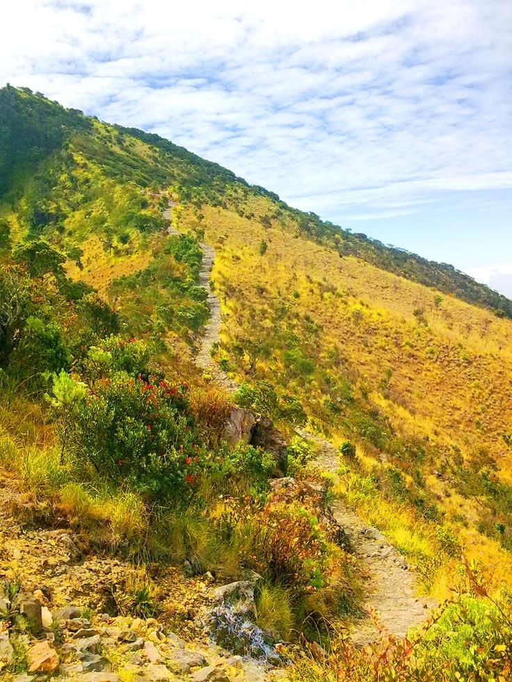 Track to summit lawu,3265M