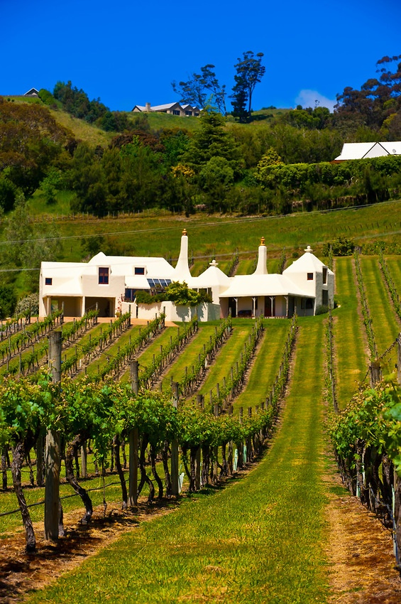 It's not in the park but it's pretty close. One of new Zealand's most photographed houses and owned by Havelock North celebrity John Buck. Te Mata Estate (Coleraine) winery, Havelock North, Hawkes Bay, North Island, New Zealand