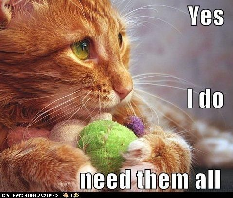 cat toys: Kitty Cat, Yarns Stash, Crochet Humor, Dogs, Cute Kitty, Crazy Cat, Funny Cat Pics, Cat Toys, Animal