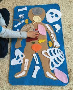 Quebra-cabeça do corpo humano de papel e feltro