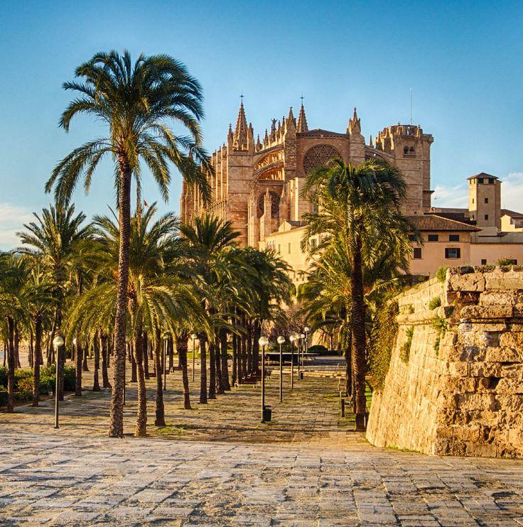 Was El Arenal auf Mallorca neben dem Ballermann zu bieten hat, erfahrt ihr in diesem Artikel.