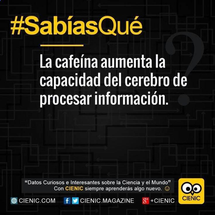 ^_^ Entérate de Datos Curiosos Instagram, Noticias Curiosas De Hoy Para Ninos y Sabias Que Absurdos ➬➬ www.cienic.com/...