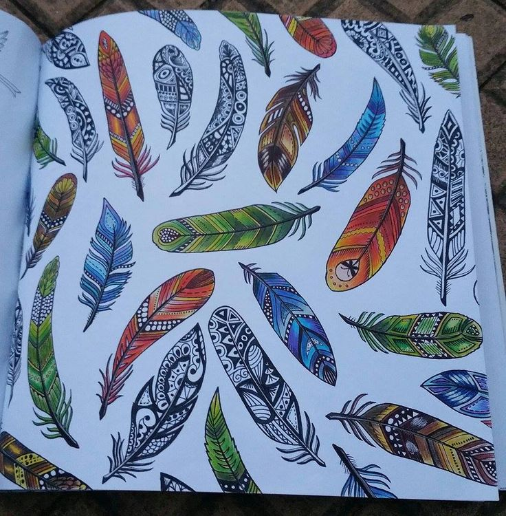 My Friend Did It Not Me Floresta Encantada Penas Enchanted Forest Feathers