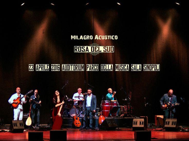 Milagro-Acustico_Rosa-del-Sud_00004