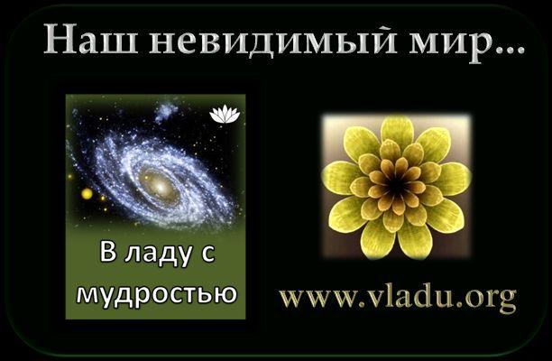 www.vladu.org - Содержание книги
