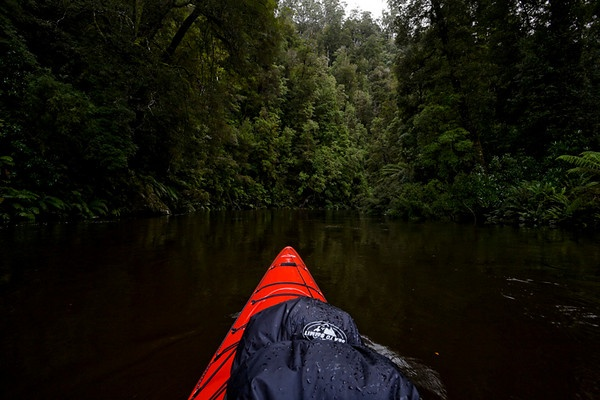 Kayaking on the Donaldson River, Pieman River State Reserve, West Coast, Tasmania