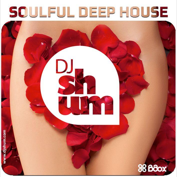 djshum_soulful_deep_house_4