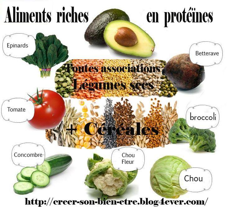 legumes cereales sources de proteines.jpg