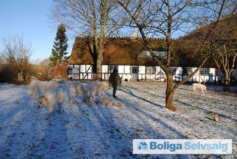 Overby Skovvej 11, Overby, 8732 Hovedgård - Idyllisk beliggende Skov hus med stor grund med rigt dyreliv. #landejendom #hovedgård #selvsalg #boligsalg #boligdk
