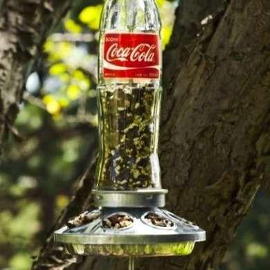 Coke Bottle Bird Feeder - Wine Bottle Crafts - 10 New Uses for Old Bottles - Bob Vila