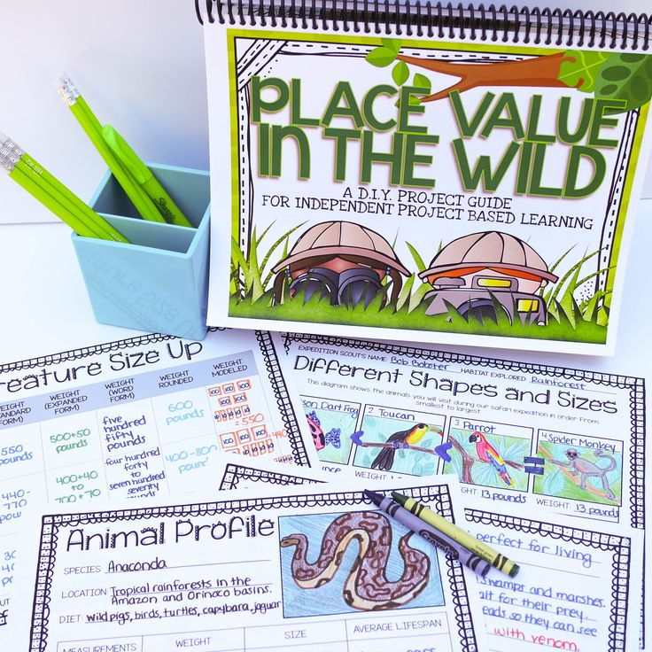 Place Value Project - your students will love applying their place value skills during this interactive math project. The D.I.Y. Project Guide from Core Inspiration by Laura Santos walks your students through every detail of the project to maximize student independence. Finally, project based learning is possible!