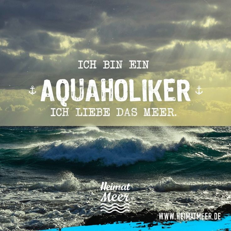 AQUAHOLIKER | Mee(h)r vom Meer >>
