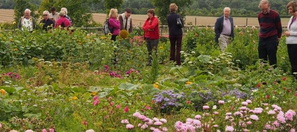 Claire Brown (centre in the red top and jacket) of Plantpassion in East Clandon…