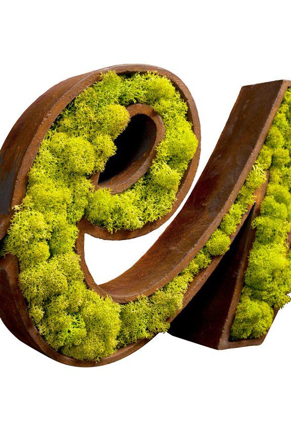 Zielony logotyp z #mchu. #Ekologiczna #identyfikacja graficzna Moss Trend®.