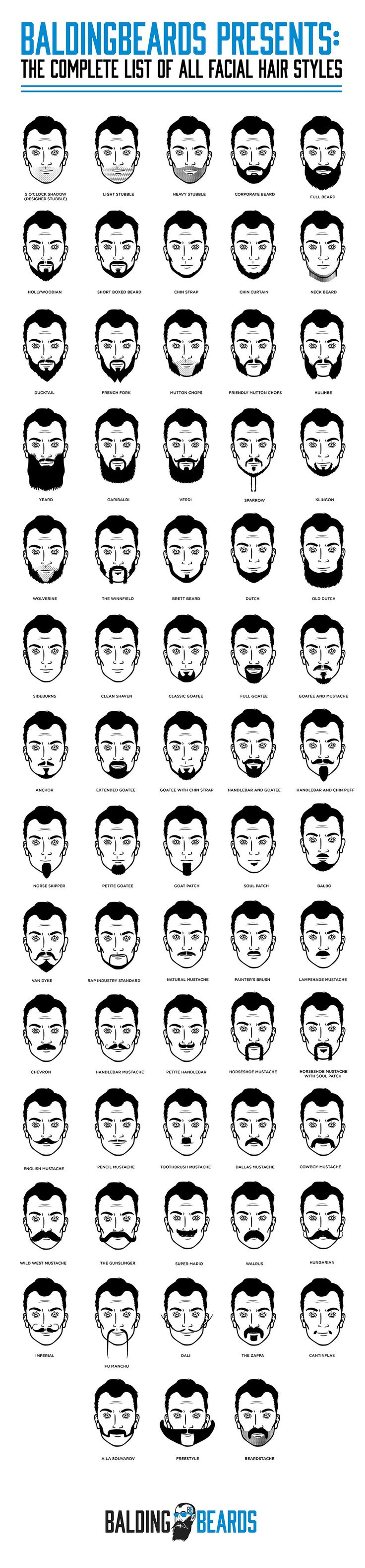 The Complete List Of All Facial Hair Styles #Infographic #LifeStyle...my hubby has the corporate beard, lol!
