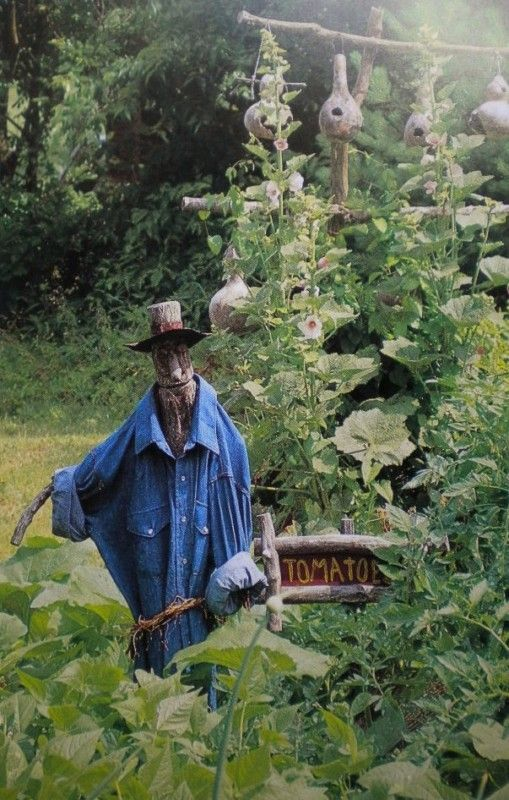 17 Best Images About Scarecrows On Pinterest Gardens