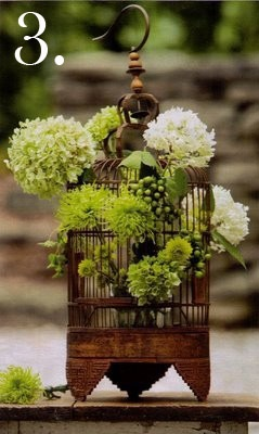 birdcage cage arrangement