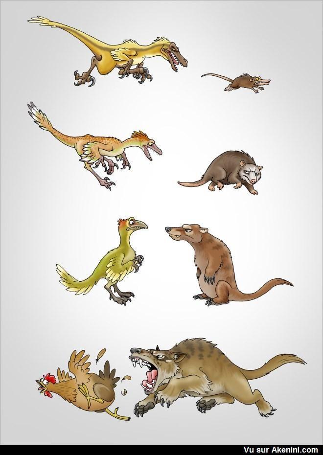 Evolution de la proie et du prédateur - velociraptor evolucion