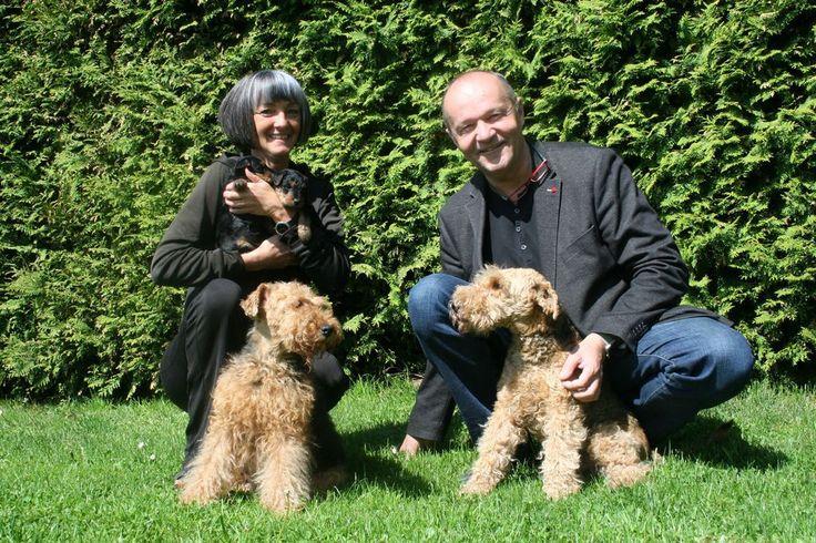 """""""Klar schlafen unsere Hunde im Bett""""  """"Ihre Hunde sind aber nicht besonders gut erzogen."""" Diesen Vorwurf mussten sich die beiden Welsh-Terrier-Züchter Winfried Hackl und seine Frau Roswitha Leeb-Hackl aus Perg schon oft gefallen lassen. """"Vor allem von Jägern, denn die sind häufig der..."""