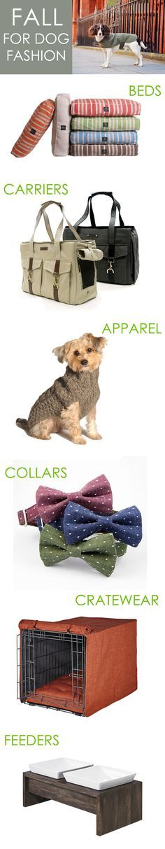 Fall for our curated collection of dog fashion! Find everything from designer dog carriers to luxury dog crate covers to complete your pup's style!