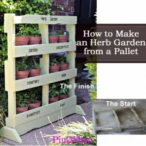 How to Make An Attractive Herb Garden from a Pallet -