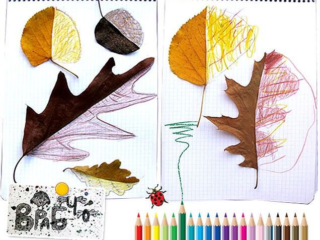 neat idea. cut leaves in half and the kids draw in the other half.