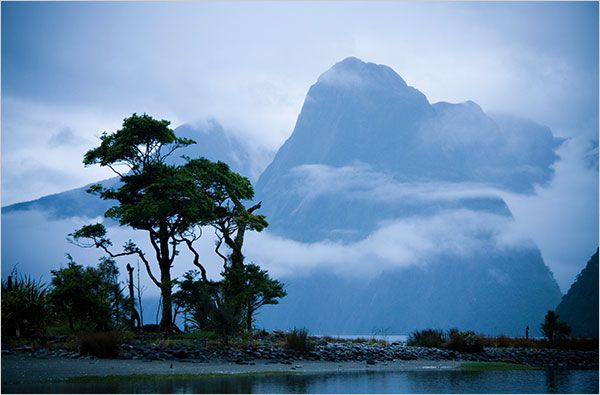 Milford Sound New Zealand: Favorite Places, Dreams, Wish Lists, Places I D, National Parks, Newzealand, Fiordland National, Travel Guide, New Zealand