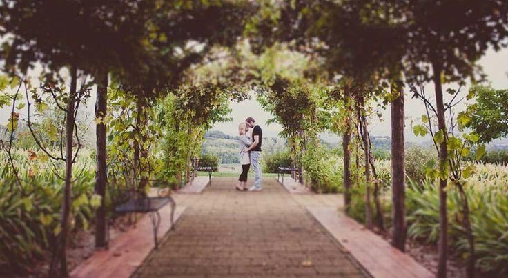 AnDphotography   wedding photographer