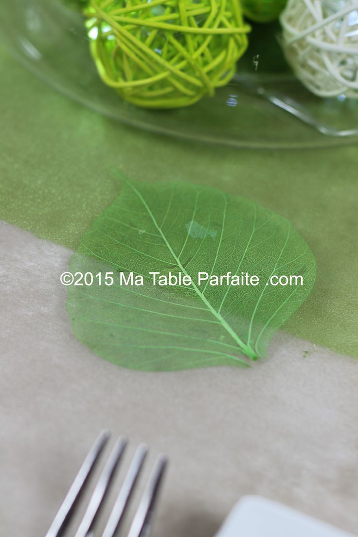 114 best images about deco de table vert blanc on for Centre de table vert anis