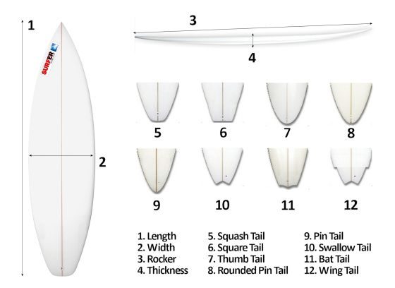 Surfboard design: focus on length, width, thickness, rocker and tail