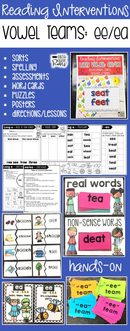 This binder is full of ideas for reading interventions, small group teaching or to use with your entire classroom of kindergarteners, first graders, or struggling second graders. It focuses on ee/ea vowel team. There are word sorts, writing, chants, word cards, games, pre & post assessments, directions and written ideas for lesson or interventions. Use some of these ideas in centers as well. Students will work hard to master ea/ee vowel team. Everything is easily stored in a 1/2 inch binder.
