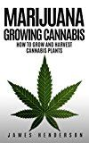 Free Kindle Book -   Marijuana: Growing Cannabis - How To Grow And Harvest Cannabis Plants (Personal Cultivation, Growing Weed, Growing Marijuana, Seeds, Sativa, Indica, Cannabis Oil, Botany, Cancer)