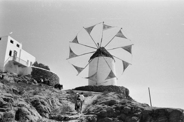 ΜΥΚΟΝΟΣ 1960 ΦΩΤΟΓΡΑΦΙΑ Harry Weber