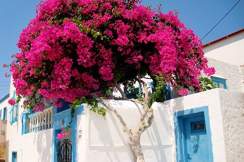 greek islands | Tumblr