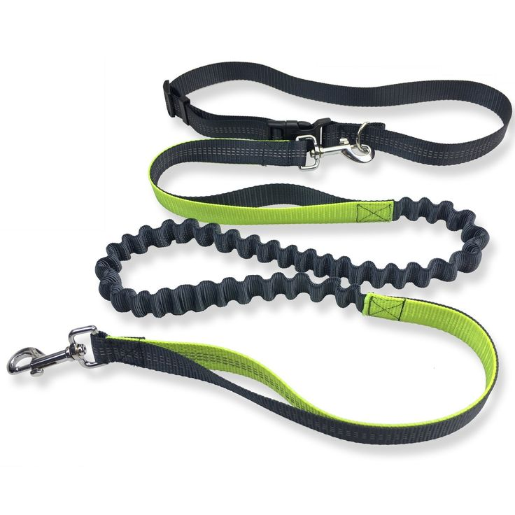 Coio Hands Free Dog leash,Double Handle for Running, Walking, Hiking,, No Pull Leash with Retractable Shock Absorbing Bungee,Reflective Stitching and Adjustable Waist Belt,5 Foot Long -- See this great image  : Leashes for dogs