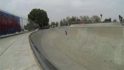 skateboarding expert