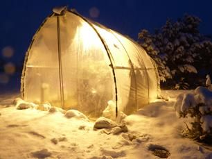 303 best greenhouse images on pinterest | greenhouse ideas, green