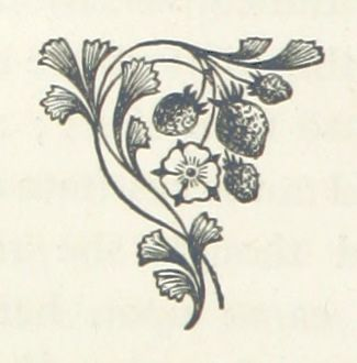 Image taken from page 66 of '[Adam and Eve. [A novel.]]' | Flickr