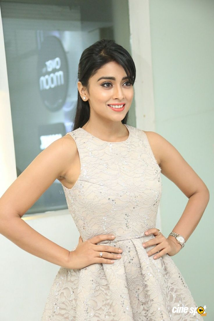Shriya Saran at SIIMA Awards 2014 Pre Party (5)