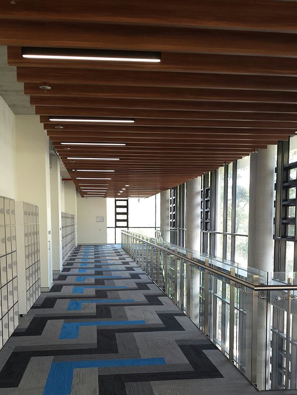 Lightweight slatted ceiling with timber looking finish by Decor Systems at University of Wollongong