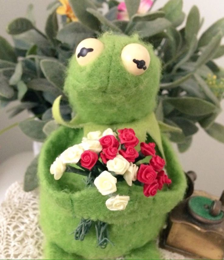 Kermit picked u some flowers!