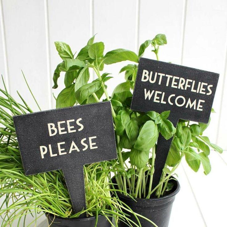 Jardin potager : faire des étiquettes pour vos plantes