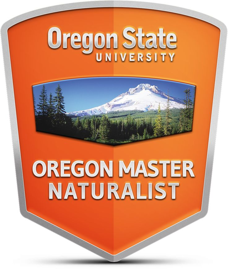 Professional and continuing education students at Oregon State University can earn a digital badge for completing a course, workshop or certificate program.