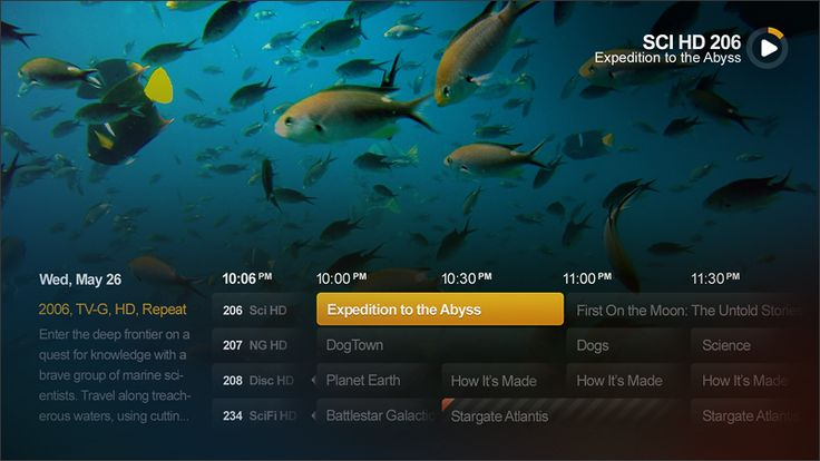TV Guide on Fullscreen Picture