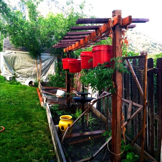 My Hanging Garden amp Boxes Pinterest